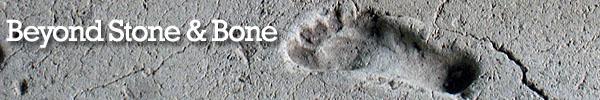 Beyond Stone & Bone