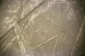 800px-Nazca-lineas-arana-c01