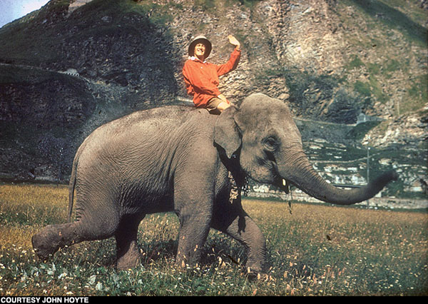 John Hoyte on a Indian elephant, Jumbo, through Mount Cenis Pass